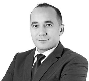 Hassane H. El Sheref