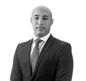 Mohamed Abdelhamed