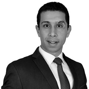 Mohamed Elbasha