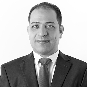 Wael Elgouhari